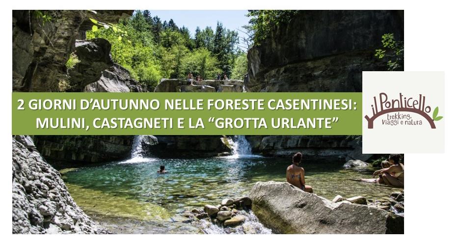 """AUTUNNO NELLE FORESTE CASENTINESI: MULINI, CASTAGNETI E LA """"GROTTA URLANTE"""" (26 e 27 ottobre 2021)"""